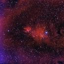 Nebulosa del Cono NGC 2264 banda estrecha (Cone Nebula narrow band),                                Alfredo Beltrán