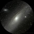 M31 round crop ,                                William Guyot-Lénat