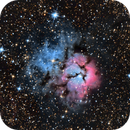 Trifid, M20, NGC6514,                                Michael Shwartz