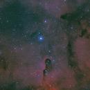 IC 1396,                                Greg Watkins