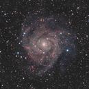 IC 342 - The Hidden Galaxy,                                Roger Ménard