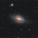 NGC 3521 / Bubble Galaxy,                                Chris Sullivan