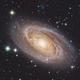 "M81 - HaLRGB - 8"" F4 ONTC Newtonian- ASI1600MM - 26 hours,                                Rowland Archer"