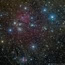 NGC2170 - The Angel,                                Richard Bratt