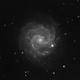 NGC 3184: Little Pinwheel Galaxy,                                Ryan Caputo