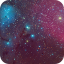 IC2169,                                Davide Manca
