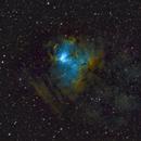 NGC 1491 (a.k.a. SH2-206 and LBN 704) - Fossil Footprint Nebula,                                Kurt Zeppetello