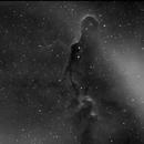 Elephant Trunk Nebula,                                caliguliminix