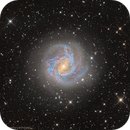 M 83 Southern Pinwheel Galaxy,                                Liu Zhuokai