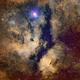 Butterfly Nebula in Cygnus,                                JFS3691