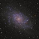 M33,                                Ivaylo Stoynov