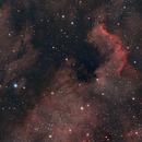 Pelican & North America Nebula,                                SerAlbi