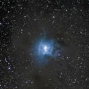 Iris Nebula - NGC7023,                                Zak Foreman
