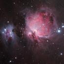 M42,                                Ferfex