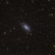 NGC 2403 - Single Shot 4min no Guiding,                                Robert Eder