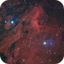 IC5070 (the Pelican Nebula and Herbig Haro friends),                                Gianni Cerrato