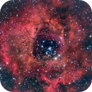 Rosette Nebula,                                Scott Iver