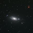 NGC 5055,                                Stephane Neveu