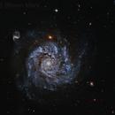NGC 1309,                                Steven Marx