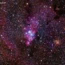The Cone Nebula, Hubble's Variable Nebula, Fox-Fur Nebula, Open Star Cluster Trumpler 5 and More,                                Roger Clark
