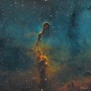 Elephant Trunk Nebula in SHO,                                Waylon Brown