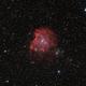 NGC 2174 - Monkey Head Nebula,                                stricnine