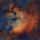 NGC 7822,                                Christer Strandh