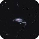 NGC-5394 - The Colors of Distortion,                                Steve Solon and Terry Chatterton