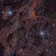 Pelican Nebula,                                George Simon