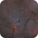 IC 1396 - Cropped Trunk Ha,                                Michael