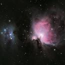 Orion Nebula,                                Tcphotography