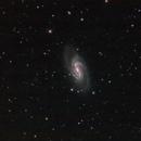 NGC2903,                                Don Walters