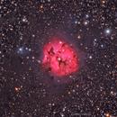 IC5146 - Cocoon Nebula in HaLRGB,                                Girish