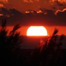 Lever de soleil,                                Roger Bertuli