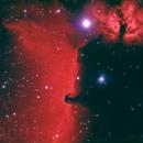 B33 The Horsehead Nebula,                                mac01