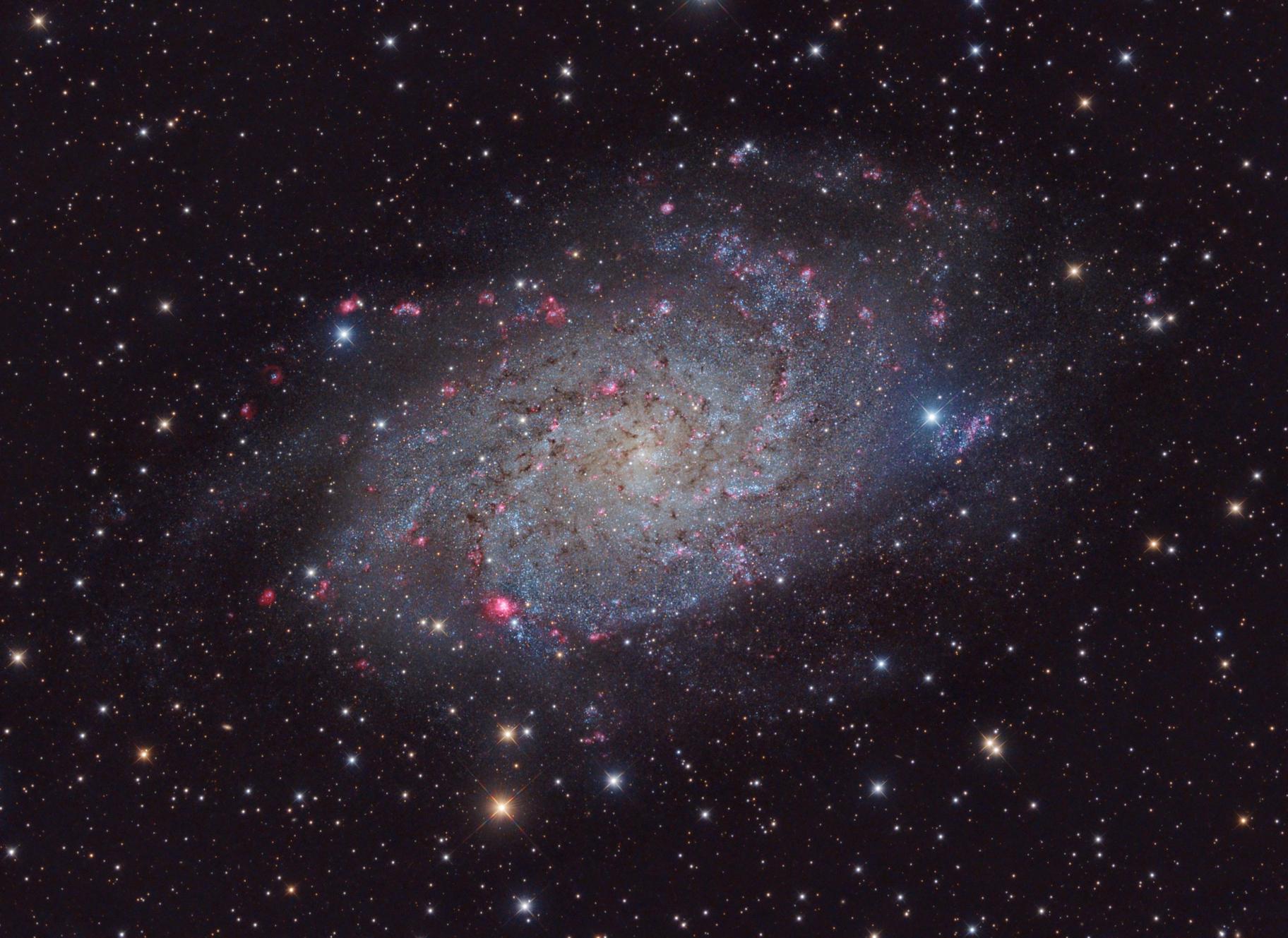 M33 - Galaxy in Triangulum,                                Stellario