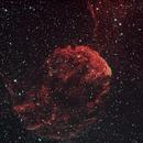 Jellyfish Nebula IC 443,                                Markus Schwabenland