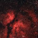 Butterfly Nebula NGC1318,                                Chief