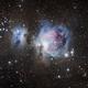 M42 Great Orion Nebula,                                Valentin Thélier