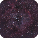 Rosette Nebula, saturation test (it is too much, I know...),                                Elboubou