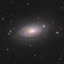 Messier 63 the Sunflower Galaxy,                                Dave Boddington
