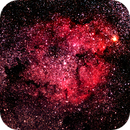 IC1396 Elephant's Trunk Nebula,                                Aldo Bassi