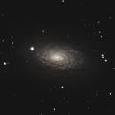 M63 -  Sunflower galaxy,                                Jinyoung