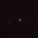 Gran Nebulosa de Orion / Great Nebula un Orion,                                NOVATO1005