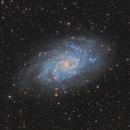 Messier 33 Galaxy in Triangulum,                                Steve Milne