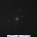 M49,                                Michael A. Phillips