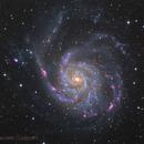 M101,                                Daniele Gasparri