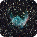 NGC 2359 (Thor's Helmet),                                Matthias Mändl