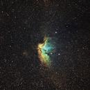 Wizard Nebula,                                AcmeAstro