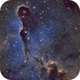 Elephant's Trunk nebula in IC 1396,                                angryowl